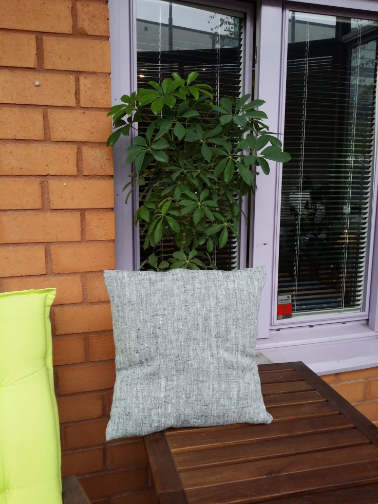 Pillow and a plant