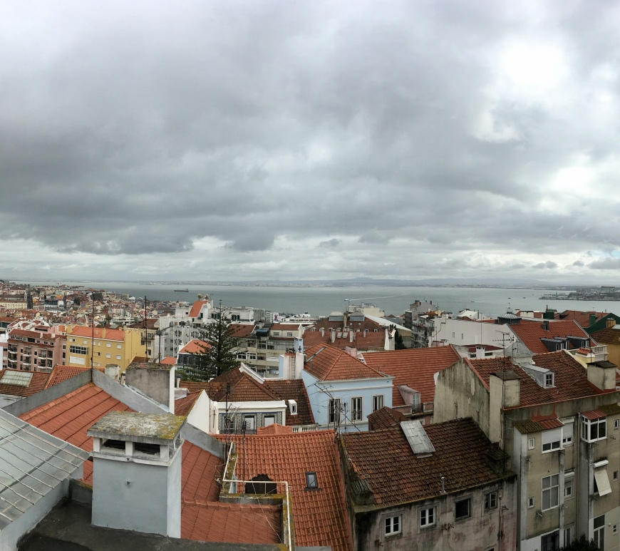 View over Lisbon, Julia Amosova